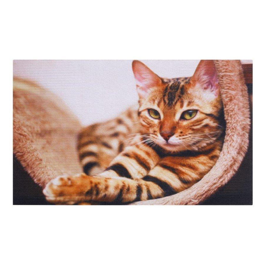 Vnitřní čistící vstupní rohož FLOMA Gallery Cat - délka 45 cm, šířka 75 cm a výška 0,6 cm