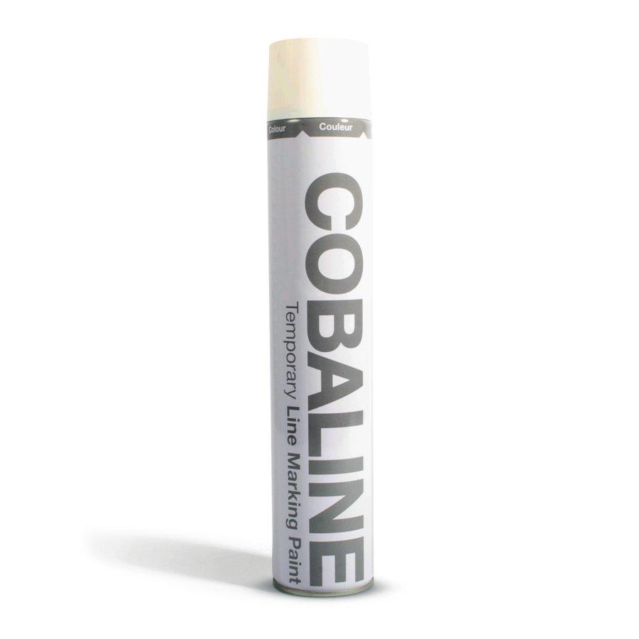Bílá aerosolová rychleschnoucí krátkodobá barva - objem 750 ml