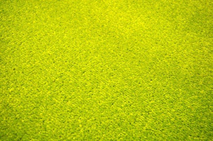 Zelený kusový kulatý koberec Eton - průměr 100 cm