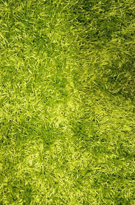 Zelený kusový koberec Paradise